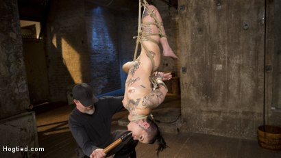 Photo number 4 from Tattooed Pain Slut Endures Brutal Bondage with Agonizing Torment shot for Hogtied on Kink.com. Featuring Leigh Raven and The Pope in hardcore BDSM & Fetish porn.