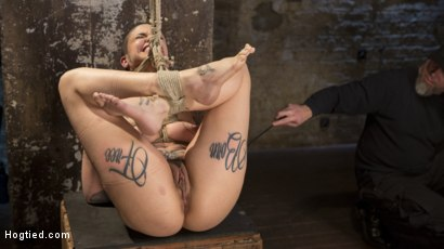 Photo number 11 from Tattooed Pain Slut Endures Brutal Bondage with Agonizing Torment shot for Hogtied on Kink.com. Featuring Leigh Raven and The Pope in hardcore BDSM & Fetish porn.