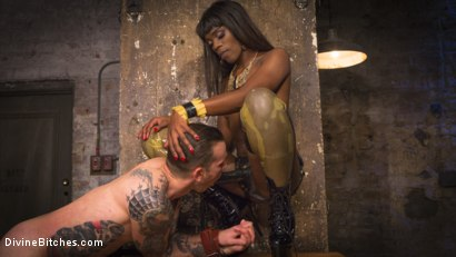 Photo number 6 from Fashion Model Ana Foxxx Turns Will Havoc Into Her Plaything shot for Divine Bitches on Kink.com. Featuring Ana Foxxx and Will Havoc in hardcore BDSM & Fetish porn.