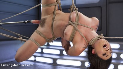 Photo number 13 from Roxanne Rae is Tied Up and Tormented with Anal Orgasms shot for Fucking Machines on Kink.com. Featuring Roxanne Rae in hardcore BDSM & Fetish porn.