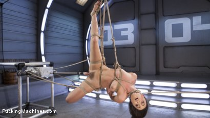 Photo number 14 from Roxanne Rae is Tied Up and Tormented with Anal Orgasms shot for Fucking Machines on Kink.com. Featuring Roxanne Rae in hardcore BDSM & Fetish porn.