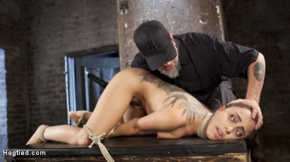 Photo number 12 from College Brat Gets Devastating Torment in Grueling Bondage  shot for Hogtied on Kink.com. Featuring Roxanne Rae and The Pope in hardcore BDSM & Fetish porn.