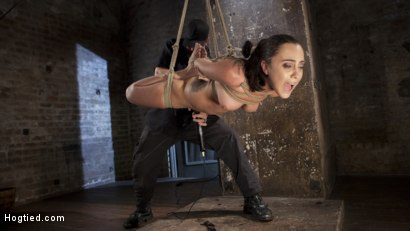 Photo number 7 from College Brat Gets Devastating Torment in Grueling Bondage  shot for Hogtied on Kink.com. Featuring Roxanne Rae and The Pope in hardcore BDSM & Fetish porn.