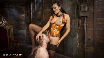 Photo number 6 from Her Willing Slave shot for TS Seduction on Kink.com. Featuring Mike Panic and Venus Lux in hardcore BDSM & Fetish porn.