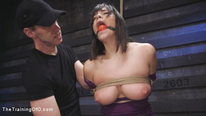 Photo number 5 from Big Tits, Tight Dress, High Heels: New Slave Training Violet Starr shot for The Training Of O on Kink.com. Featuring Seth Gamble and Violet Starr in hardcore BDSM & Fetish porn.
