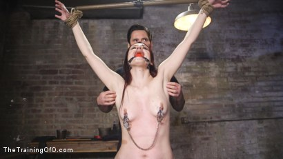 Photo number 8 from Training Violet Monroe shot for The Training Of O on Kink.com. Featuring Tommy Pistol and Violet Monroe in hardcore BDSM & Fetish porn.