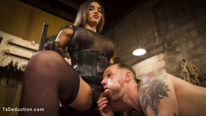 Photo number 4 from Are You Ready To Please Your Mistress shot for TS Seduction on Kink.com. Featuring Tori Mayes and Will Havoc in hardcore BDSM & Fetish porn.