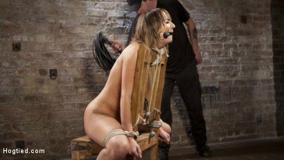 Photo number 3 from Charlotte's Caught in a Web of Bondage and Tormented shot for Hogtied on Kink.com. Featuring Charlotte Cross and The Pope in hardcore BDSM & Fetish porn.