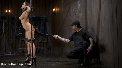 Photo number 11 from Big Tit Squirter Screams in Metal Bondage shot for Device Bondage on Kink.com. Featuring Karlee Grey and The Pope in hardcore BDSM & Fetish porn.