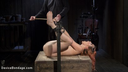 Photo number 7 from Used and Left Behind shot for Device Bondage on Kink.com. Featuring Amarna Miller and The Pope in hardcore BDSM & Fetish porn.