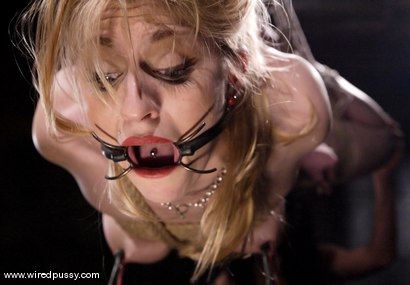 Photo number 14 from Tawni Ryden shot for Wired Pussy on Kink.com. Featuring Tawni Ryden in hardcore BDSM & Fetish porn.