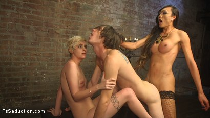 Photo number 19 from Cramming Anatomy 101 With Venus Lux shot for TS Seduction on Kink.com. Featuring Venus Lux, Mercy West and Tony Orlando in hardcore BDSM & Fetish porn.