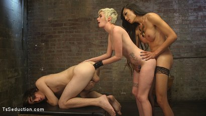 Photo number 20 from Cramming Anatomy 101 With Venus Lux shot for TS Seduction on Kink.com. Featuring Venus Lux, Mercy West and Tony Orlando in hardcore BDSM & Fetish porn.
