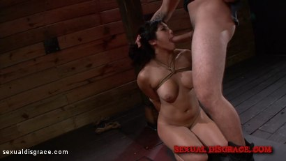 Photo number 1 from Mia Li Loves to Squeal for her Master shot for Sexual Disgrace on Kink.com. Featuring Mia Li in hardcore BDSM & Fetish porn.
