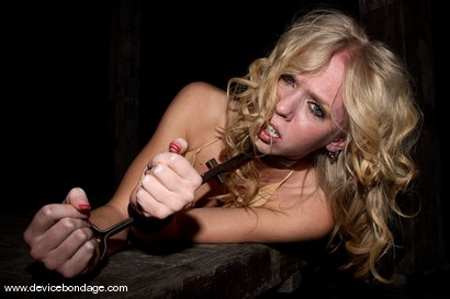 Photo number 5 from Boxed Bitch shot for Device Bondage on Kink.com. Featuring Sarah Jane Ceylon in hardcore BDSM & Fetish porn.