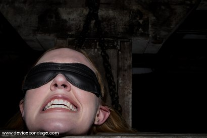 Photo number 11 from Cockateel shot for Device Bondage on Kink.com. Featuring Dee Williams in hardcore BDSM & Fetish porn.