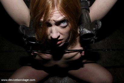 Photo number 4 from Cockateel shot for Device Bondage on Kink.com. Featuring Dee Williams in hardcore BDSM & Fetish porn.