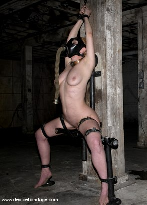 Photo number 8 from Cockateel shot for Device Bondage on Kink.com. Featuring Dee Williams in hardcore BDSM & Fetish porn.