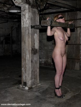 Photo number 12 from Cockateel shot for Device Bondage on Kink.com. Featuring Dee Williams in hardcore BDSM & Fetish porn.