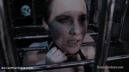 Photo number 2 from Diamonds In The Rough: Ana Foxxx, Katie St. Ives shot for Deviant Hardcore on Kink.com. Featuring Ana Foxxx and Katie St. Ives in hardcore BDSM & Fetish porn.
