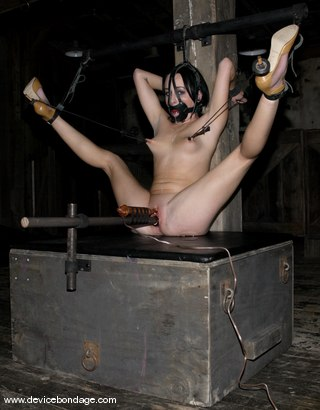 Photo number 8 from Strapped and Muzzled shot for Device Bondage on Kink.com. Featuring Alexa Von Tess in hardcore BDSM & Fetish porn.