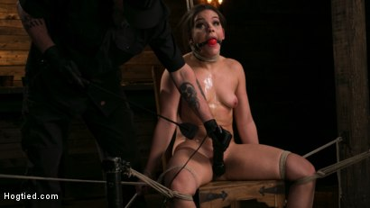 Photo number 12 from New Pain Slut Proves her Worth to The Popes High Expectations shot for Hogtied on Kink.com. Featuring Kimber Woods and The Pope in hardcore BDSM & Fetish porn.