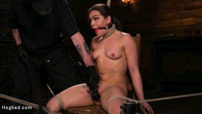 Photo number 6 from New Pain Slut Proves her Worth to The Popes High Expectations shot for Hogtied on Kink.com. Featuring Kimber Woods and The Pope in hardcore BDSM & Fetish porn.
