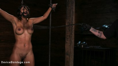 Photo number 2 from Fresh Meat - Sadie Santana  shot for Device Bondage on Kink.com. Featuring Sadie Santana and The Pope in hardcore BDSM & Fetish porn.