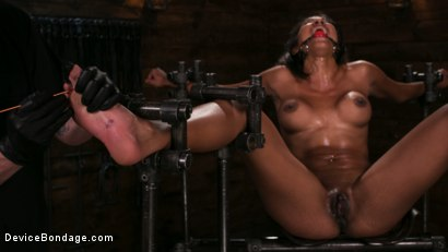 Photo number 12 from Fresh Meat - Sadie Santana  shot for Device Bondage on Kink.com. Featuring Sadie Santana and The Pope in hardcore BDSM & Fetish porn.