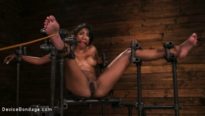 Photo number 3 from Fresh Meat - Sadie Santana  shot for Device Bondage on Kink.com. Featuring Sadie Santana and The Pope in hardcore BDSM & Fetish porn.