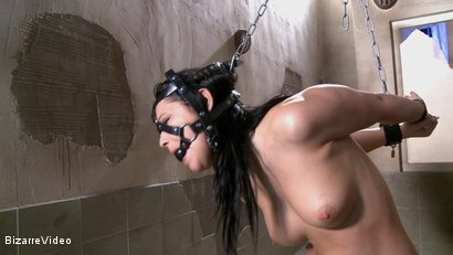 Photo number 15 from Nubile Cargo: Lana shot for Bizarre Video on Kink.com. Featuring  in hardcore BDSM & Fetish porn.