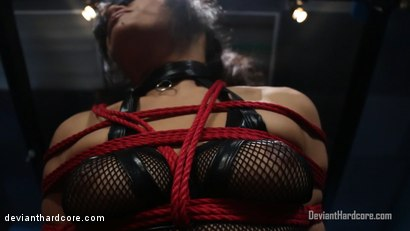 Photo number 1 from Bound For Domination: Annie Cruz, Small Hands shot for Deviant Hardcore on Kink.com. Featuring Annie Cruz and Small Hands in hardcore BDSM & Fetish porn.
