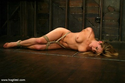 Photo number 4 from Gwen Diamond shot for Hogtied on Kink.com. Featuring Gwen Diamond in hardcore BDSM & Fetish porn.