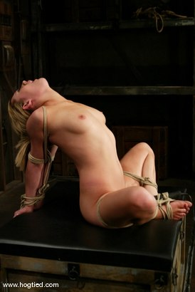 Photo number 9 from Gwen Diamond shot for Hogtied on Kink.com. Featuring Gwen Diamond in hardcore BDSM & Fetish porn.