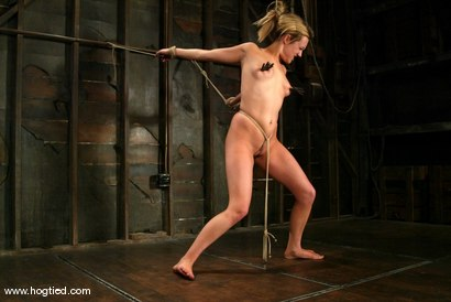 Photo number 14 from Gwen Diamond shot for Hogtied on Kink.com. Featuring Gwen Diamond in hardcore BDSM & Fetish porn.