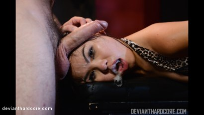 Photo number 6 from Submission 2: Cindy Starfall, Tommy Pistol shot for Deviant Hardcore on Kink.com. Featuring Cindy Starfall and Tommy Pistol in hardcore BDSM & Fetish porn.