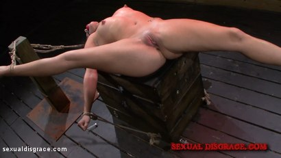 Photo number 11 from Stella May's Orgasm Marathon shot for Sexual Disgrace on Kink.com. Featuring Stella May and James Kickstand in hardcore BDSM & Fetish porn.