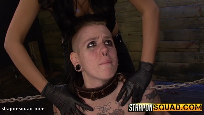 Photo number 10 from Jynx Hollywood Chained to the Sybian by Mena Li & Lexy Villa shot for Strapon Squad on Kink.com. Featuring  in hardcore BDSM & Fetish porn.