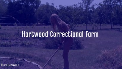 Photo number 2 from Hartwood Correctional Farm: Jennifer Love, Victoria Blond shot for Bizarre Video on Kink.com. Featuring  in hardcore BDSM & Fetish porn.
