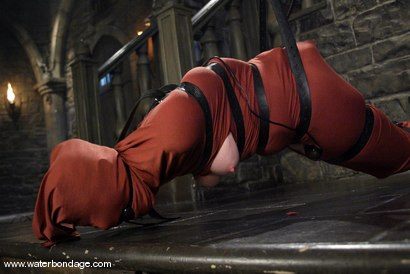 Photo number 4 from Tawni Ryden shot for Water Bondage on Kink.com. Featuring Tawni Ryden in hardcore BDSM & Fetish porn.