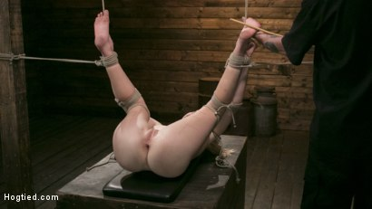 Photo number 12 from Extreme Domination and Torment in Mind Blowing Bondage shot for Hogtied on Kink.com. Featuring Ashley Lane and The Pope in hardcore BDSM & Fetish porn.