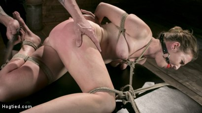Photo number 6 from Extreme Domination and Torment in Mind Blowing Bondage shot for Hogtied on Kink.com. Featuring Ashley Lane and The Pope in hardcore BDSM & Fetish porn.