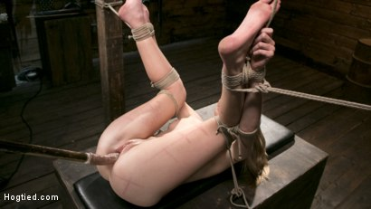 Photo number 11 from Extreme Domination and Torment in Mind Blowing Bondage shot for Hogtied on Kink.com. Featuring Ashley Lane and The Pope in hardcore BDSM & Fetish porn.