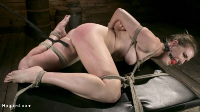Photo number 4 from Extreme Domination and Torment in Mind Blowing Bondage shot for Hogtied on Kink.com. Featuring Ashley Lane and The Pope in hardcore BDSM & Fetish porn.