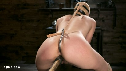 Photo number 14 from Sexy Blonde Mistress Submits to Rope Bondage and Suffering shot for Hogtied on Kink.com. Featuring Lyra Law and The Pope in hardcore BDSM & Fetish porn.