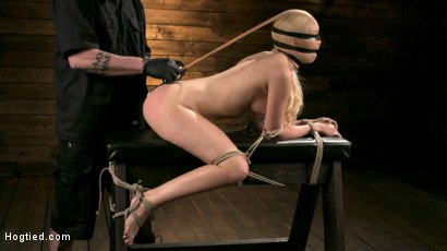 Photo number 4 from Sexy Blonde Mistress Submits to Rope Bondage and Suffering shot for Hogtied on Kink.com. Featuring Lyra Law and The Pope in hardcore BDSM & Fetish porn.