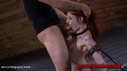 Photo number 7 from Sheena Rose's Tight Pussy is Left Gaping shot for Sexual Disgrace on Kink.com. Featuring Sheena Rose and James Kickstand in hardcore BDSM & Fetish porn.