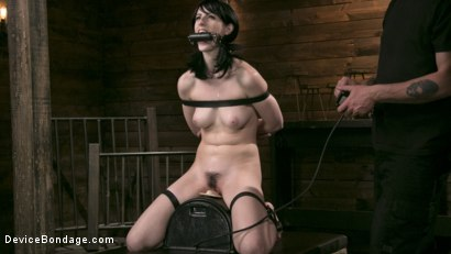 Photo number 6 from Fresh Meat - Alex Harper Gets Her 1st Taste of Domination and Bondage shot for Device Bondage on Kink.com. Featuring Alex Harper and The Pope in hardcore BDSM & Fetish porn.