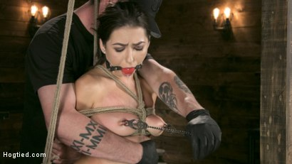 Photo number 5 from All Natural Bondage Slut Endures Torment and Suffering with Squirting Orgasms!! shot for Hogtied on Kink.com. Featuring Melissa Moore and The Pope in hardcore BDSM & Fetish porn.