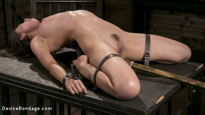 Photo number 11 from Newcomer Melissa Moore Submits to Screaming Bondage shot for Device Bondage on Kink.com. Featuring Melissa Moore in hardcore BDSM & Fetish porn.